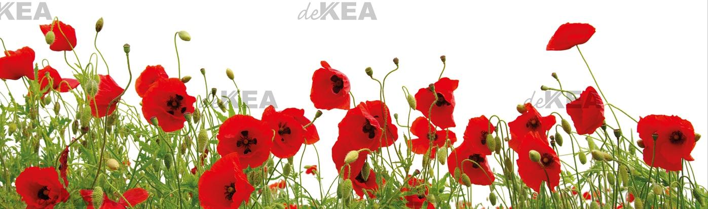Panele szklane deKEA_czerwone maki